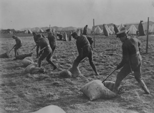 8th Battalion, Winnipeg Rifles, on Salisbury Plain. Bayonet Practice with bags of Straw.